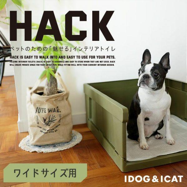 iDogのシンプルオシャレな犬用トイレ【HACK】でお部屋をランクアップ!