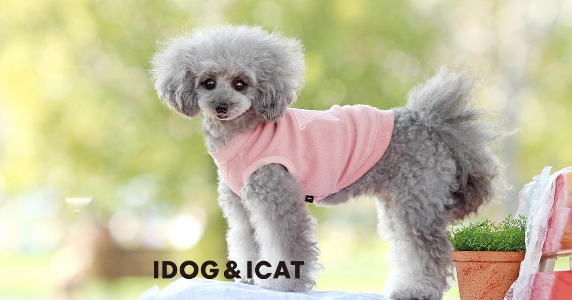 IDOG&ICATテキスト 2021春夏新作ウェア
