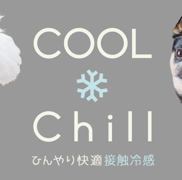 接触冷感素材ウェア「COOL Chill」。夏の暑さや日差しから愛犬の身体を守る6つの機能を備えたドッグウェア。