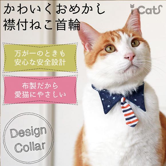 猫の正装♪襟付きの上品な首輪で清楚で可憐なニャンコに変身