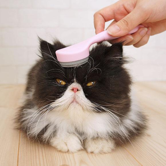猫が癒される!!まるで猫舌のようなマッサージブラシ