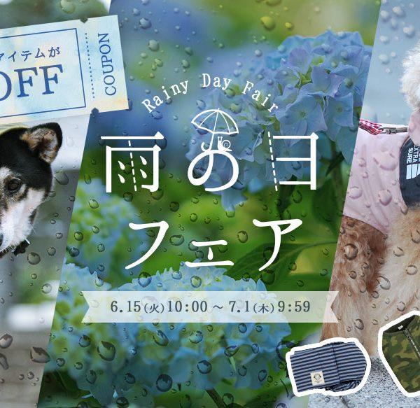 雨の日フェア開催中