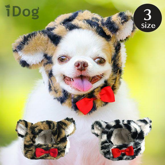 トラの仮装をする犬