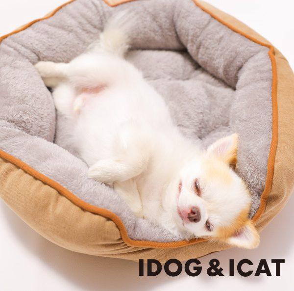 2021秋冬新作のIDOG&ICATオリジナルペットベッド&ホットマットが新発売!保湿機能加工や体温で暖まる素材などを使用した、ペットに優しい秋冬向けベッドで愛犬・愛猫に心地よい眠りを。