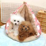 個性的でキュートな北欧デザインのドッグウェアとペット用ベッド・マット