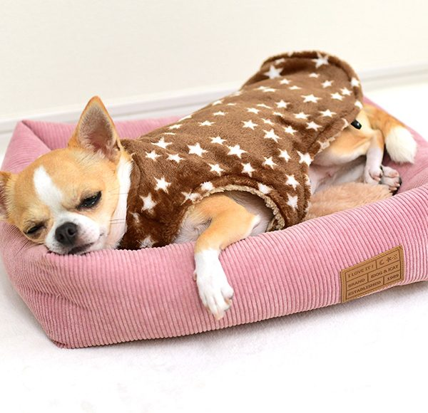 毛布ポンチョ【ペットの着る毛布】が更に快適に。