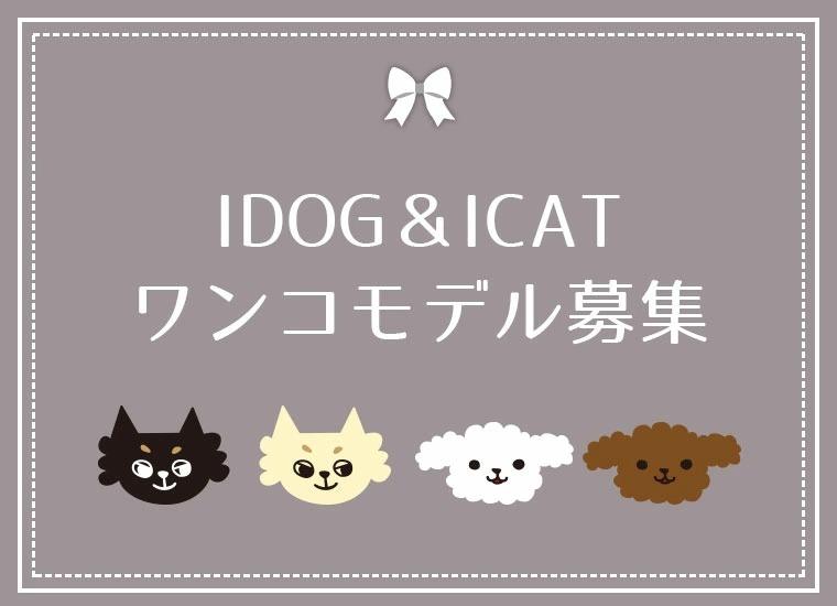 IDOG&ICAT2021モデル募集